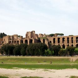 Colosseum Tour - the Palatine hill and Circus Maximus