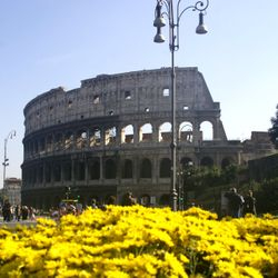Colosseum Tours - the Colosseum tour