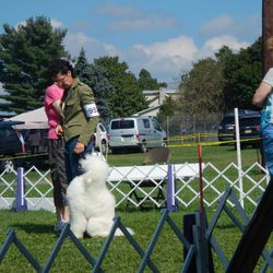 Gywn at the dog show