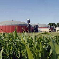 Biogas Installation - Soshanguve.