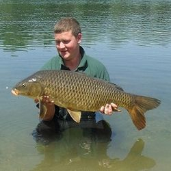 Carp fishing in the river ebro