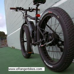 electric hunting bike
