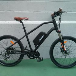electric mountain bike mid drive conversion