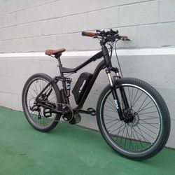high performance electric bike