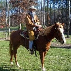 Sold Horse, trained!