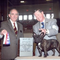 Violet with handler Joe Caton winning a BIG 5 point major in Mississippi!