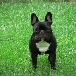 Walter!!!