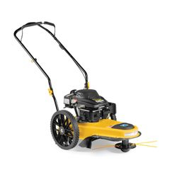 ST 100 - String Trimmer