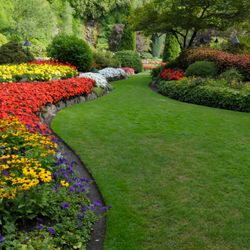 Plant bed redefining, mulch applications and trimming & pruning services