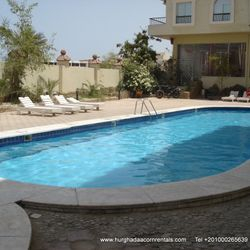 Swimming pool with kiddies pool, is in landscaped garden, has sunbeds.