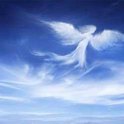 """""""Angelic Wisdom: Conversations With Your Angels"""" with Rev. Diana Friedell, March 16th-See Calendar. . ."""