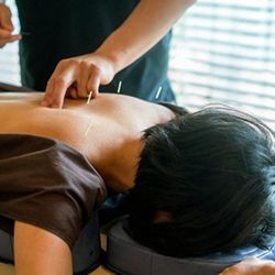 back shu body acupuncture JMI Therapeutic Wellness Services | Complementary and Alternative Therapies