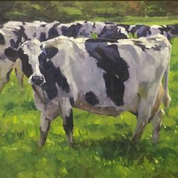 Big spotted cow  20x24