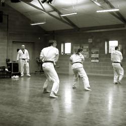Tang Soo Doo Moo Duk Kwan , Blocks and Punches with stance.