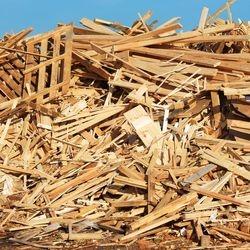 Entsorgung Holz unbehandelt Container Potsdam, Berlin, Kleinmachnow, Teltow, Werder / Havel, Falkensee, Nuthetal, Ludwigsfelde, Beelitz