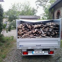 Holz entsorgen Potsdam, Berlin