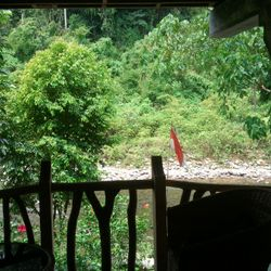 View from the Gecko Room balcony.