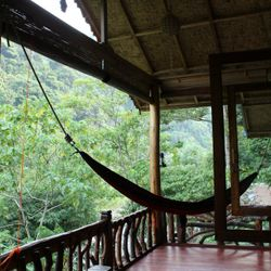 Orangutan Room balcony with hammock.