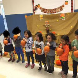 Out of all the pumpkins in the patch, we definitely have the best batch!  PreK center at 173-177 25th Street had their annual harvest pumpkin patch yesterday. The students were thrilled to see perfectly plumped pumpkins just for them! 🍁🎃 🎃🍁