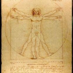 Vitruve Luc Viatour by Da Vinci