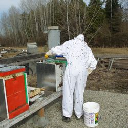bee suit checking bee hives