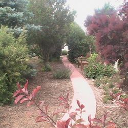 Join us for a walk in the Garden