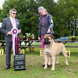 Huck and Brandi Best in Show 2015