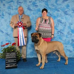 Best in Show #4 Thank you Judge Robert Whitney - July 2016