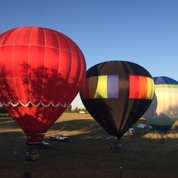 Muscadine Balloon Fiesta Sept  2016