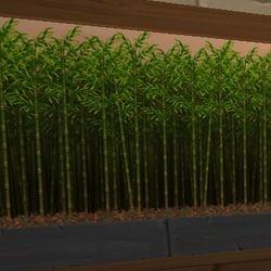 Mooshu Bamboo Wallpaper