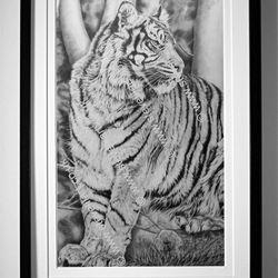 Sumatran Tiger portrait, pencil rendered artwork by Steve Lilly, stevelilart