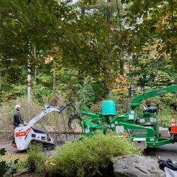 Our Mt85 Feeding the Bandit Chipper