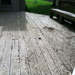 Old decking boards rotten