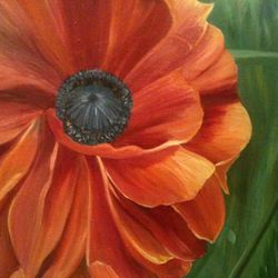 ''Orange Bloom'' oil on canvas, 75 x 60 cm, $250 AUD plus shipping