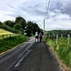 Camino de Santiago (French Route) from St Jean to Roncesvalles