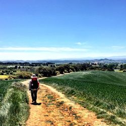 Camino de Santiago (French Route) after Pamplona