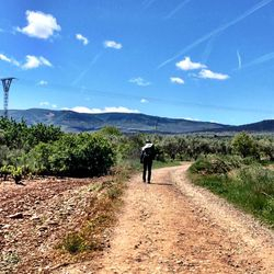 Camino de Santiago (French Route) between Logrono and Najera