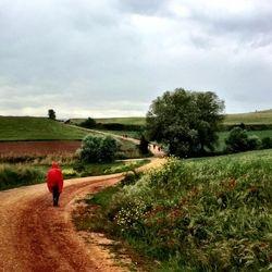 Camino de Santiago (French Route) between Estella and Los Arcos