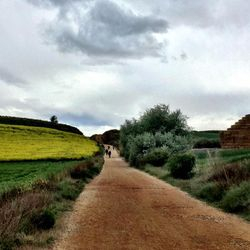Camino de Santiago (French Route) approaching Los Arcos