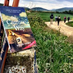 The Camino Way on the Camino (French Route)