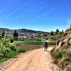 Camino de Santiago (French Route) between Los Arcos and Najera