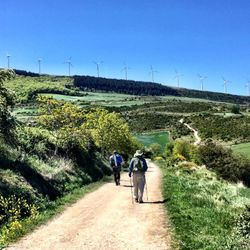 Camino de Santiago (French Route) before Puente la Reina