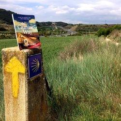 The Camino Way on the Camino
