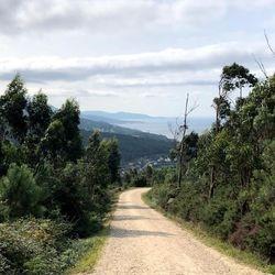 Camino Finestera