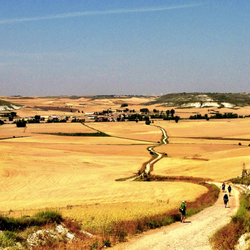 Camino de Santiago (French Route) near Castrojeriz