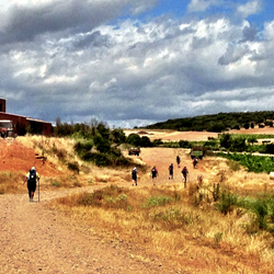 Camino de Santiago (French Route) approaching Astorga