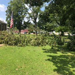 A tree GoodWorks volunteers removed following a strong storm in Goodlettsville for an elderly resident.