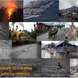 Mt Sinabung Mission