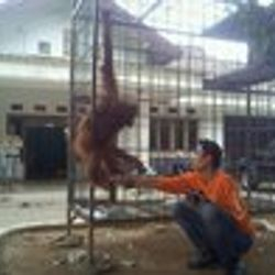 rani before rescue