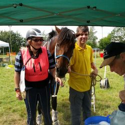 Kirsty Wiscombe and Duncan Watkinson crewing for 160km FEI*** College 2014
